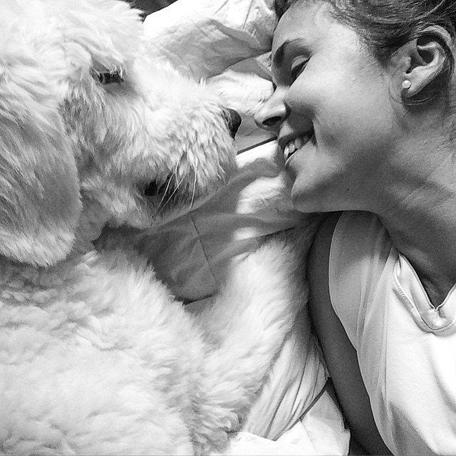 He makes me happy. #Natch #OldEnglishSheep #Dog #MyDog #BN #Bobtail #Love #TrueLove.